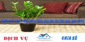 Danh sách cây trồng phong thủy giúp gia chủ phú quý, giàu sang